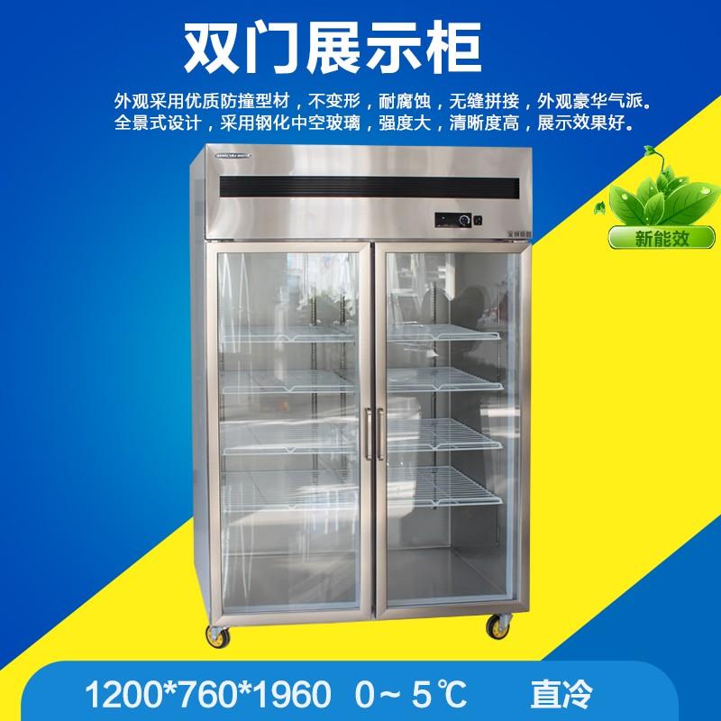冰厨工程款二门双门直冷商用展示柜商用冷藏冰箱饮料饮柜品保鲜